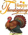 happy thanksgiving car rental special
